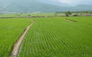口頭約實耕人來參加  對土地綠色環境給付獎勵金
