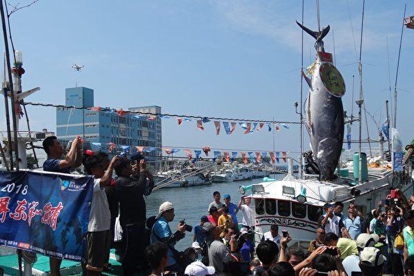 黑鮪魚觀光季 來趟東港漁村人文輕旅行