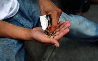 拒當大麻州 新民調:多數紐約客斥合法化