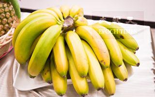 飓风致昆州作物受损严重 香蕉价格恐将高涨