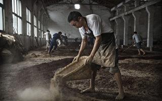 中美贸易冲突升级 中国农产品进口未减反增