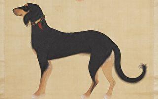 图为《清院本猎犬》。(公有领域)
