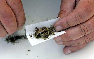 许多车祸死亡司机体内验出鸦片或大麻