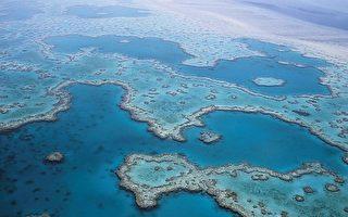 氣候變化威脅大 5億元大堡礁計畫或收效有限
