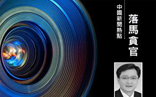 安徽省前秘书长获刑10年 与陈树隆搭档5年