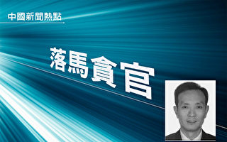 陳思敏:上海檢察院頭目相繼落馬背後的冤案