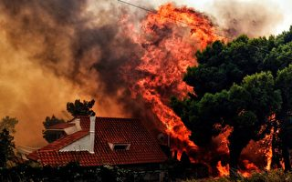 组图:希腊爆发野火60死 居民跳海逃生