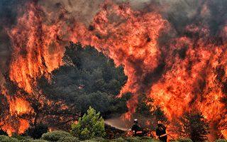 现场影片触目惊心 希腊山火已致数百死伤