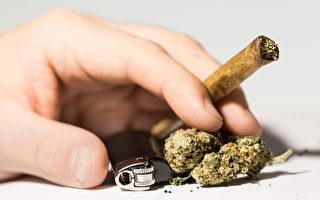 公寓禁大麻 吸大麻住戶或被迫搬走