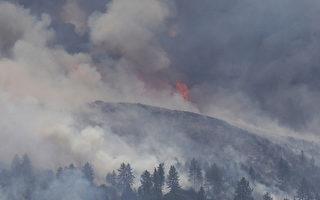 專家:加州野火危機因錯誤監管 而非氣候變化