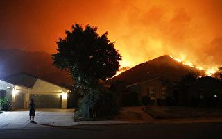 橙縣森林公園發生大火 萬人被疏散