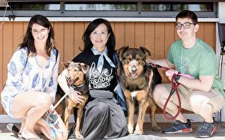 數百隻台灣流浪犬 在美被領養快樂重生