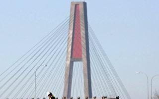 帕图洛大桥维护单向关闭近一周