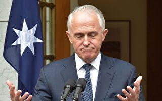 澳洲前總理特恩布爾選區 兩黨民調支持率持平