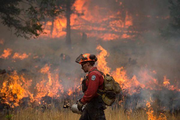 今年夏季,卑诗省遭受了约1,950起山火的侵扰,其中420多起是可以避免的人为火灾。(加通社)