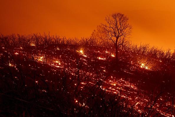 组图:火灾肆虐面积扩大 成加州史上最大野火