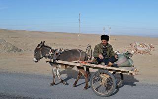 联合国:百万维族人被囚 新疆变无权利区