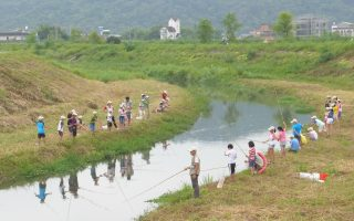 熱門暑期營 「小腳丫走濕地溪流教學工作坊」來了