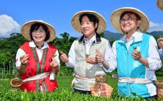 戴斗笠採茶啖釋迦 賴清德讚台東友善農業