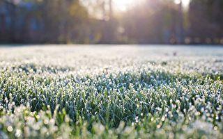 墨尔本本周异常冷 周六春天就到了