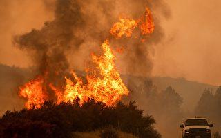 美商务部长谴责加州环保政策阻碍灭火