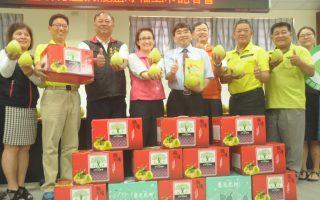 花蓮產銷履歷文旦柚  產4500萬斤25年來最佳