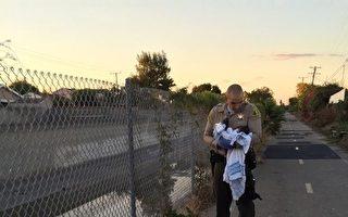 《安全弃婴法案》避免婴儿被丢弃死亡