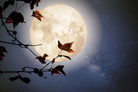 品讀唐詩】盛唐詩人遇見的月光| 張九齡| 明月| 大紀元