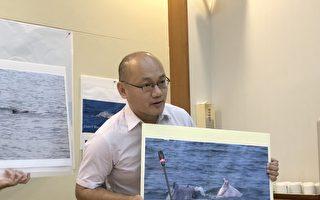 救救白海豚 台立委促海洋基本法年底过