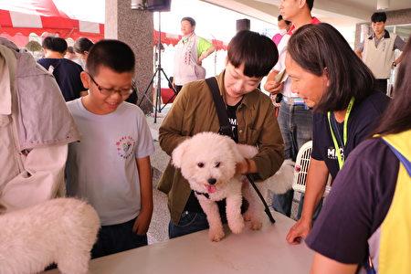 女主人饶小姐今天也带小白来做宠物登记并量量肛温。