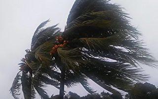 熱帶風暴戈登橫掃南佛州 撲向墨西哥灣
