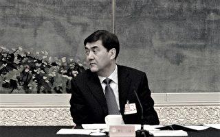 中共发改委副主任努尔·白克力被免职