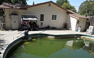 今年加州已有5人死于西尼罗河病毒