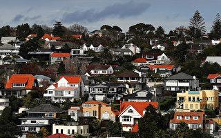 奧克蘭買房難 年輕夫婦賺多少能買得起?