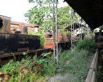 印度助尼泊尔建联外铁路 挑战中共一带一路