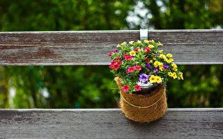 如何给庭院增添春天的气息