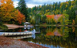 調查:享受大自然的加拿大人越來越少
