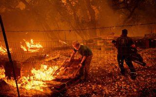 調查報告:北加州大火中阻燃劑傾倒致消防員遇難
