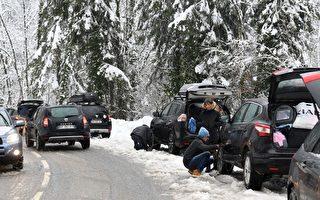 车管局:开车赏雪 换雪地轮胎上路