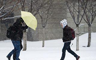 多伦多以北地区本周三可能下雪
