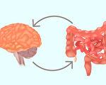 心情不好 可能是腸道出毛病 簡單方法可改善
