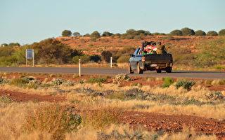 中國自駕遊客車禍 引發西澳道路安全擔憂