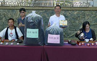 推广在地农特产 鱼池公开招标375斤红茶