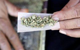 加拿大10月17日大麻合法化,但一些重要问题仍没有答案。(加通社)