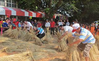 诏安客家文化节 捆稻草比赛 重温早期农村生活