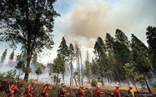 加州野火燒毀土地創紀錄