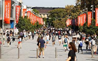 印度留學生放棄澳洲大學 入學率下降逾80%