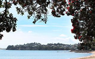 不宜游泳!奥市政府公布12个受污染海滩