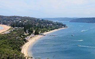 悉尼房市整体疲软 但这些区房价仍在上涨