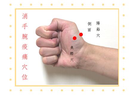 消手腕痠痛穴位-「魚際穴、陽谿穴」位置圖。